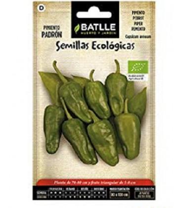 pimiento de Padrón - semillas ecológicas