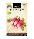 rabanito medio largo rojo punta blanca - semillas ecológicas
