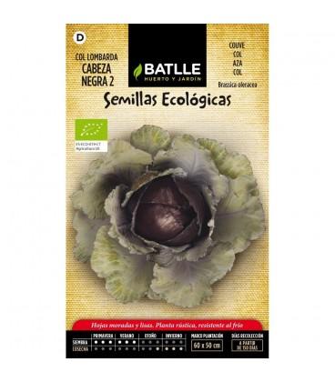 col lombarda cabeza negra 2 - semillas ecológicas
