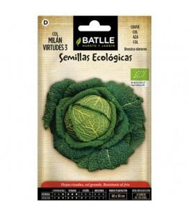 col Milán virtudes 3 - semillas ecológicas