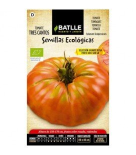 tomate tres cantos gigante rosa- semillas ecológicas