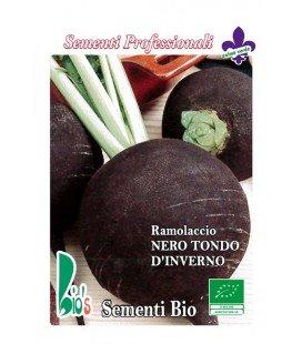 rábano negro - semillas ecológicas