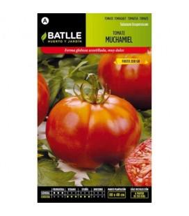 tomate Muchamiel