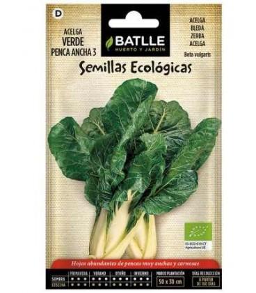 acelga verde de penca ancha 3 (semillas ecológicas)