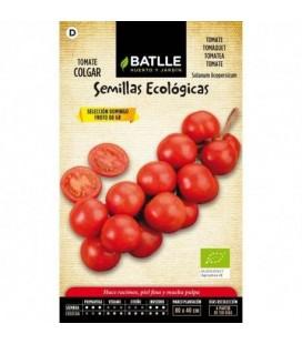 tomate de colgar sel Domingo - semillas ecológicas