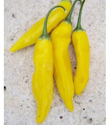 Aji limón