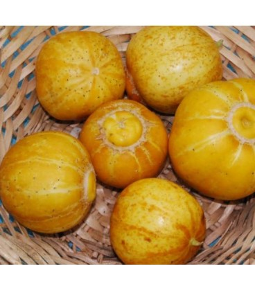 Pepino lemon Cuke