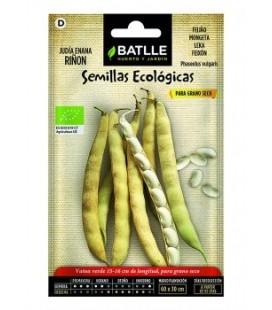 Judía enana riñón -semillas ecológicas
