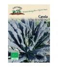 kale nero di Toscana - semillas ecologicas Arcoiris