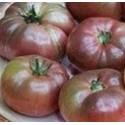 semillas de tomate cherokee purple