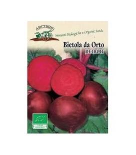 remolacha detroit bio - semillas ecológicas