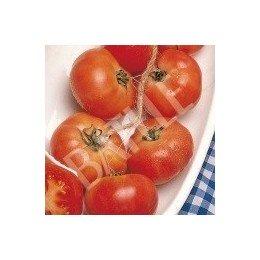 semillas tomate colgar