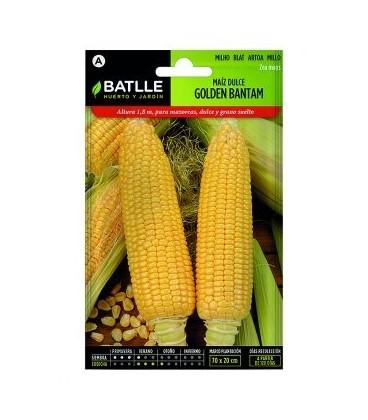 maiz dulce golden bantam