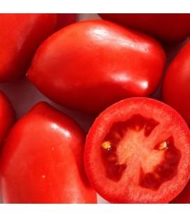 Tomate Río Grande (Semillas no tratadas)