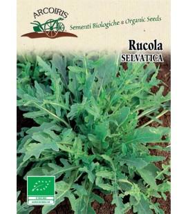 rucula selvática - semillas ecologicas Arcoiris
