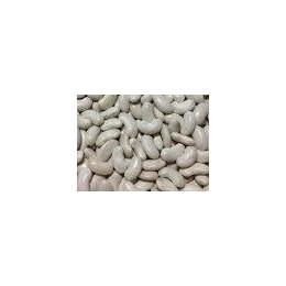 semillas de alubias para cocido montañes