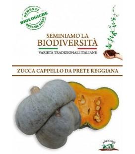 calabaza cappello da prete (semillas ecológicas)