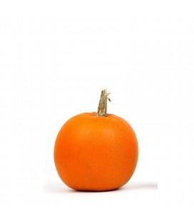 calabaza halloween Jack o´lantern (semillas ecológicas)