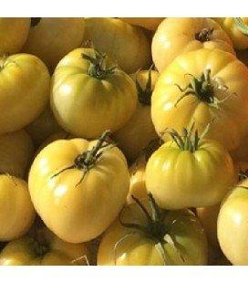 Tomate beaute blanche - semillas sin tratamiento