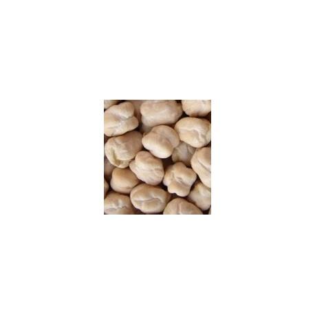 garbanzo pedrosillano - semillas ecológicas