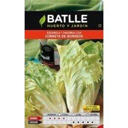 semillas de escarola corneta de Burdeos