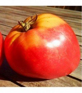 Tomate Corazón de Buey (Semillas no tratadas)
