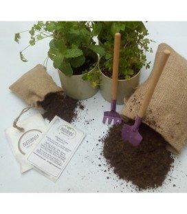 Kit de cultivo de hojas para ensalada