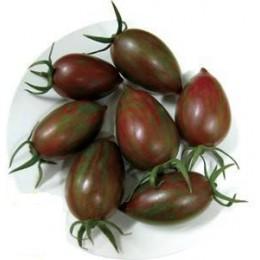 semillas de tomate cherry cebra purpura F1