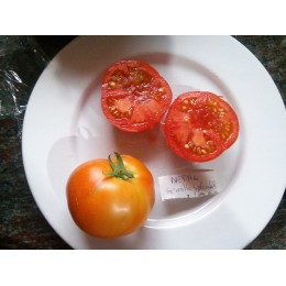 semillas de tomate Nepal