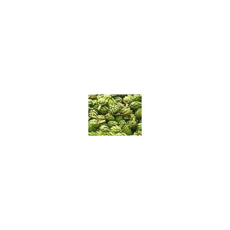 semillas de alcachofa verde globo