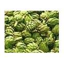 alcachofa verde globo (semillas sin tratamiento)