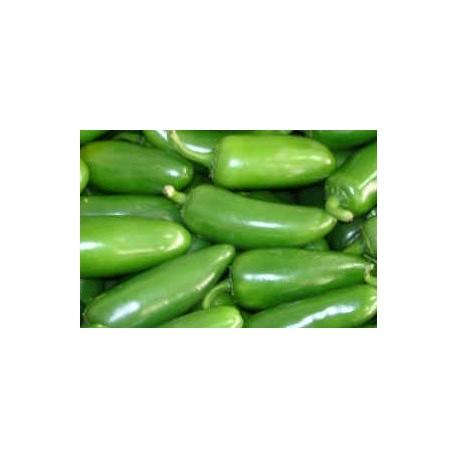 pimiento jalapeño - semillas ecológicas