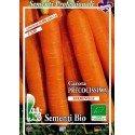 semillas ecológicas de zanahoria touchon