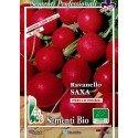 semillas ecológicas de rabanito redondo rojo saxa