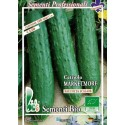 pepino marketmore (semillas ecológicas bioseme)