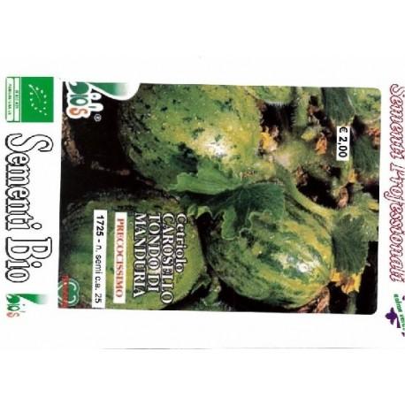 semillas ecologicas de pepino carosello