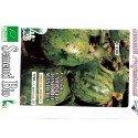 semillas ecologicas de pepino carosello de Manduria