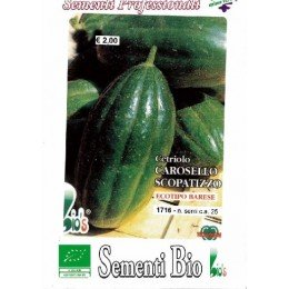 semillas ecologicas de pepino Scopatizzo medio precoz