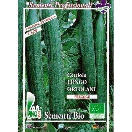 pepino largo ortolami (semillas ecológicas)