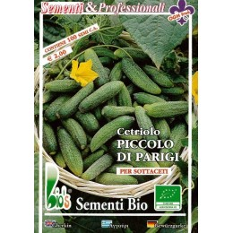 semillas ecologicas de pepino tortarello de Bari