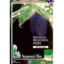 semillas ecologicas de berenjena belleza negra