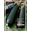 berenjena larga violeta - semillas ecológicas