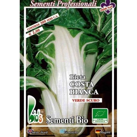 semillas ecológicas de acelga de penca blanca argentata