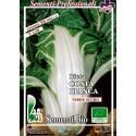 acelga de penca blanca argentata - semillas ecológicas
