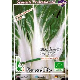 acelga de penca larga de Barí - semillas ecológicas