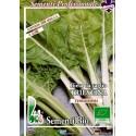 semillas ecologicas de acelga de Trieste