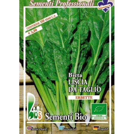 semillas ecologicas de acelga erbette - www.planetasemilla.es
