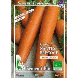 zanahoria nantesa - semillas ecológicas