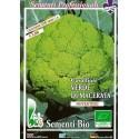 coliflor verde Macerata - semillas ecologicas