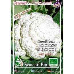 coliflor precoz de la Toscana - semillas ecológicas
